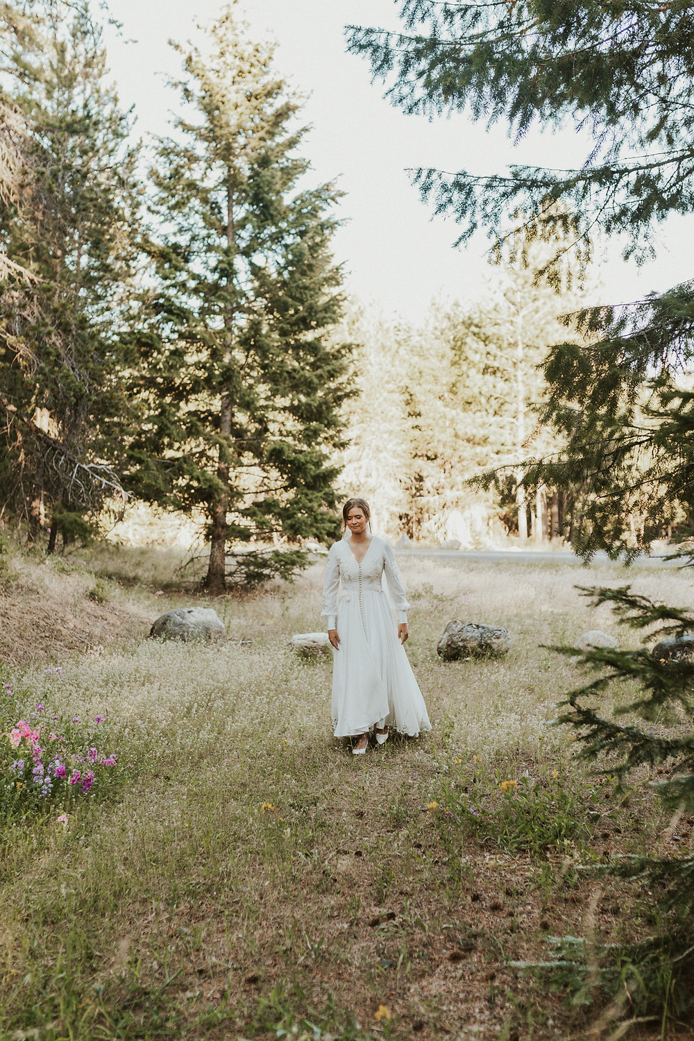 first look in wildflowers