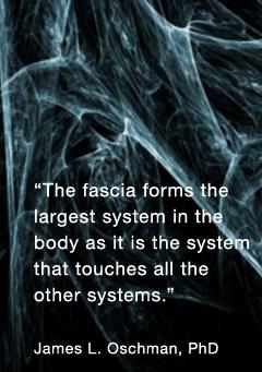 Treatment Techniques: Myofascial Release
