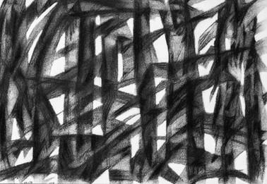 El bosque de los suicidas y los renacidos