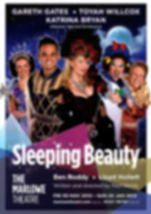 Sleping Beauty 2012