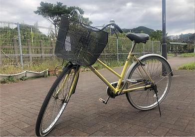 保田駅前自転車.jpg