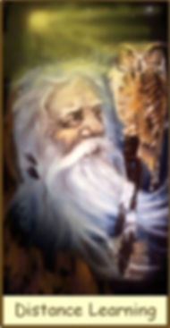 The Hermit Tarot Card from the Gamble Hounsome Tarot Deck. Distance learning courses offered on many subjects worldwide from Tarot Therapy Ltd