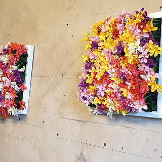 Framed Flower Pieces 1.jpg