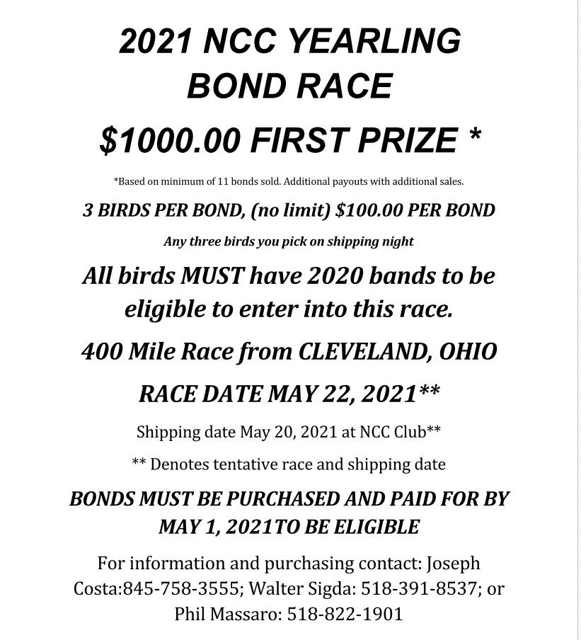 Bond Race.JPG