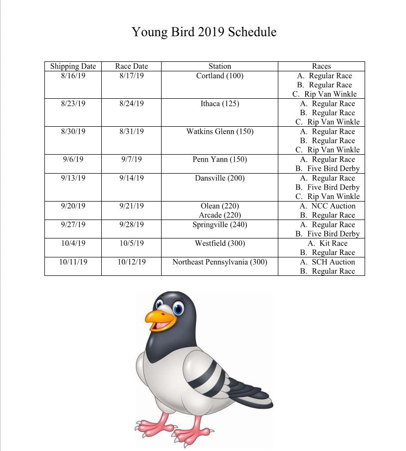 2019 Young Bird Schedule.JPG
