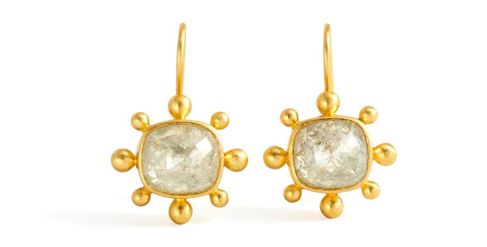 Protozoa Fancy Rose Cut Diamond Earrings