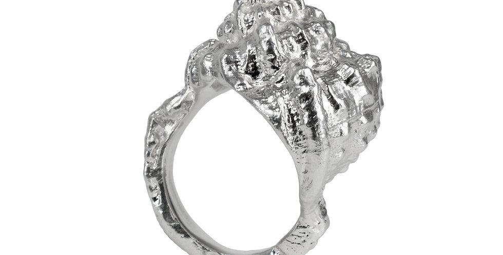 Silver Seashell Ring