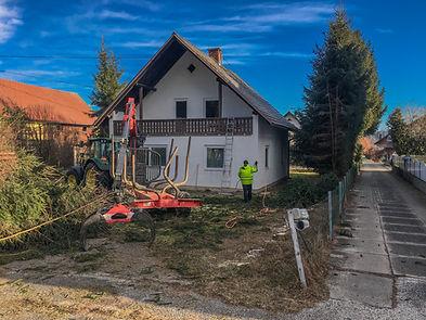 Hoi Ihr Haus und Gartenboy Baumschnitt