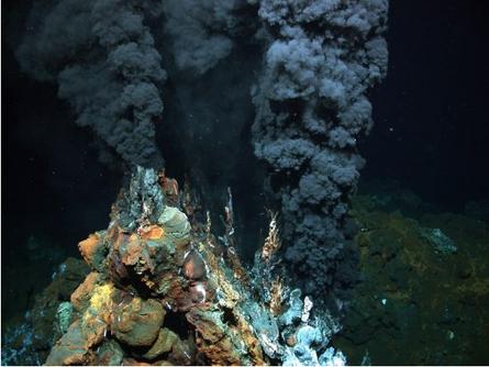 Life at Hydrothermal Vents
