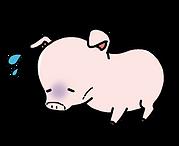 げっそり豚.png
