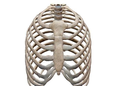胸郭の学び