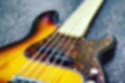 Bass Guitar Blueberry Music