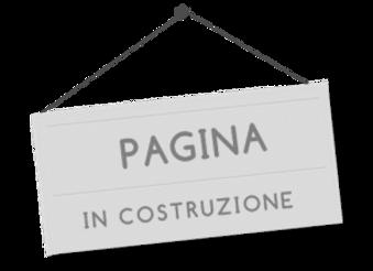 InCostruzione-300x218.png
