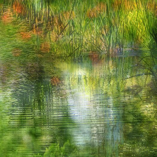Gooderstone water gardens.jpg