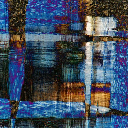 marsh dreamscape.jpg