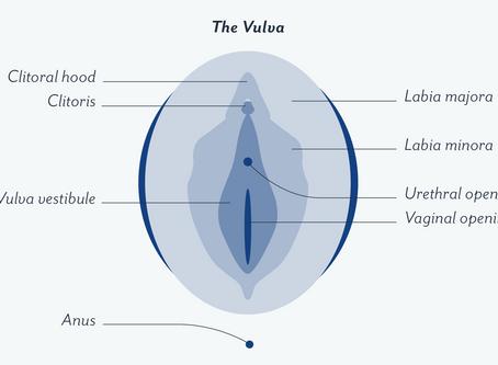 Let's Talk Vulvar Care