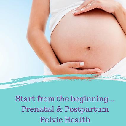 Pregnancy (1).png