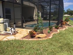Pool Enclosure landscape