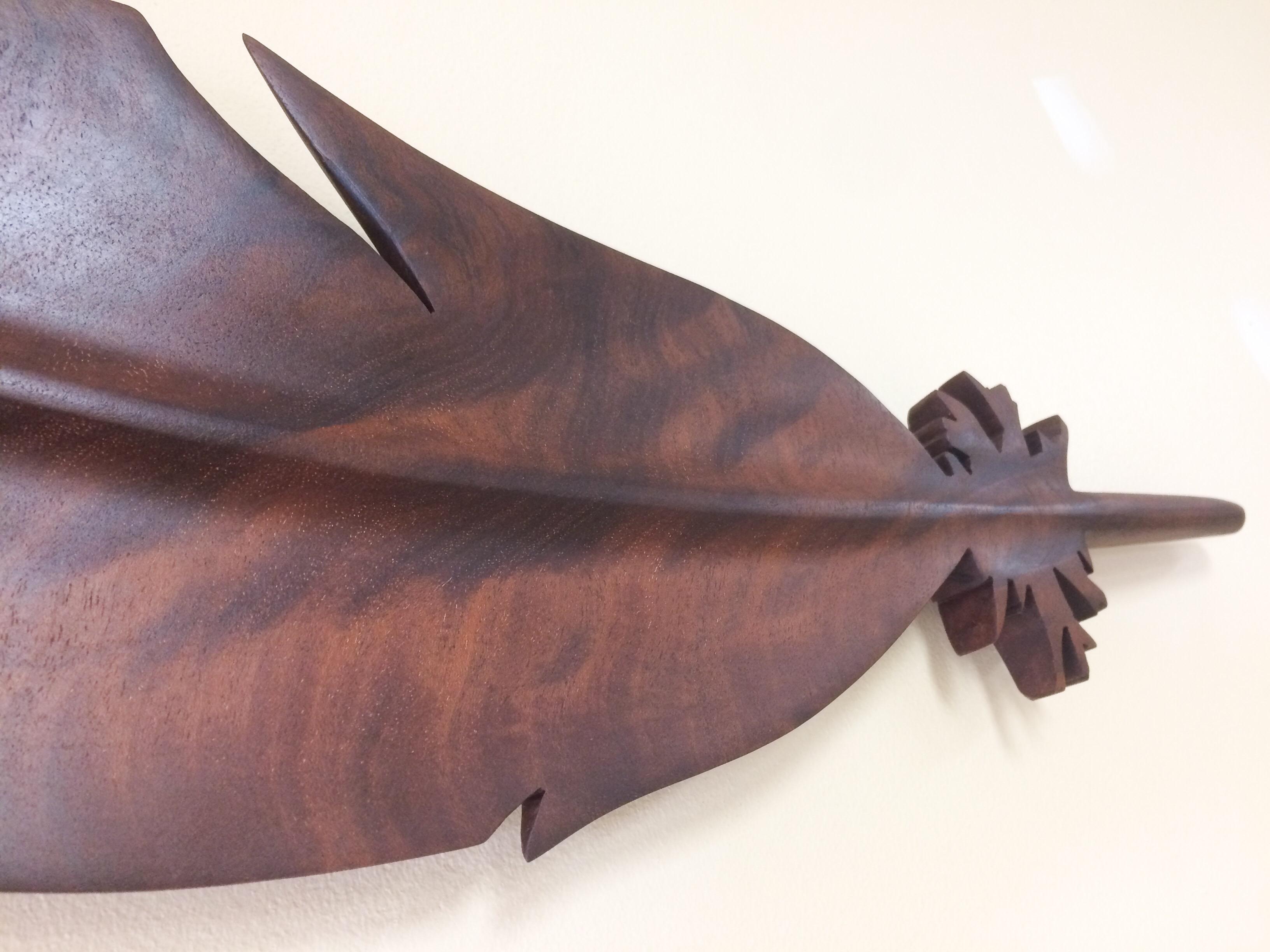 Mahogany wall feather