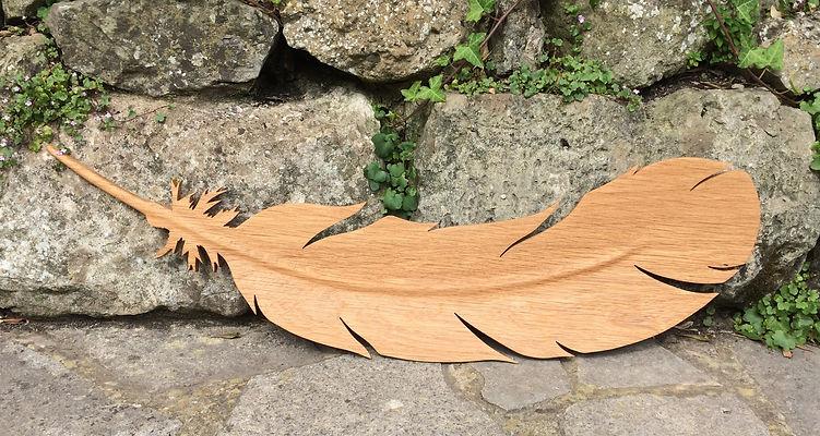 Oak feather.JPG