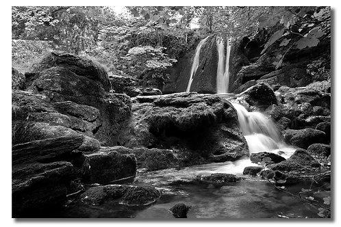 Janets Foss, Black and White