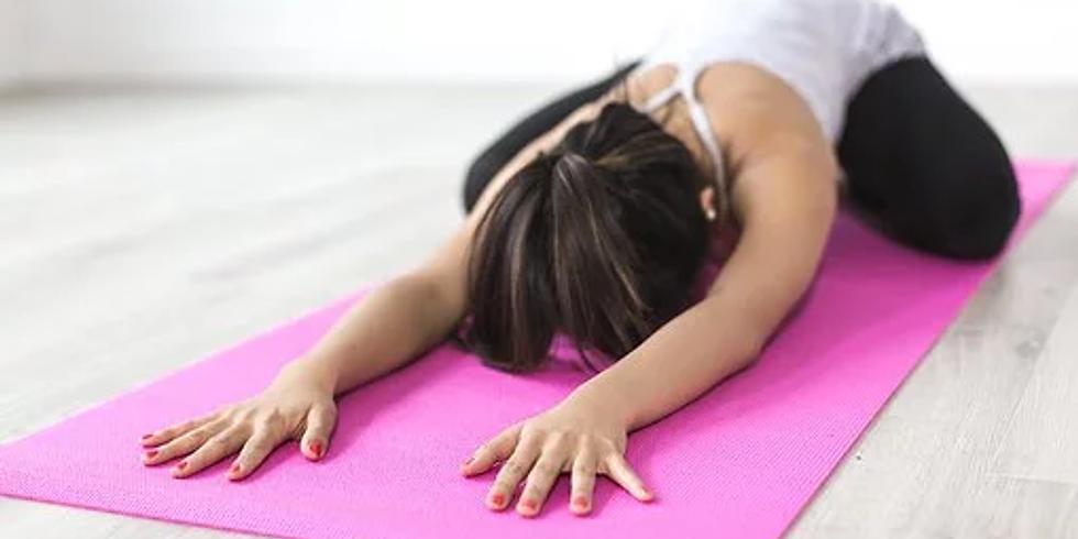 Yin Yoga für Anfänger*innen - 1. Chakra - Erdung & Nährung