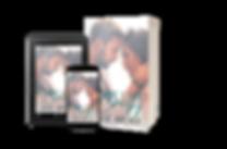 Love Like Crazy Composite for website 01