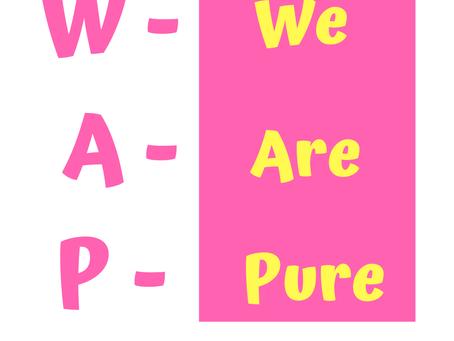 W.A.P. Remix
