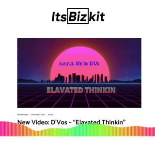 n.e.r.d. life by D'Vo on It's BizKit