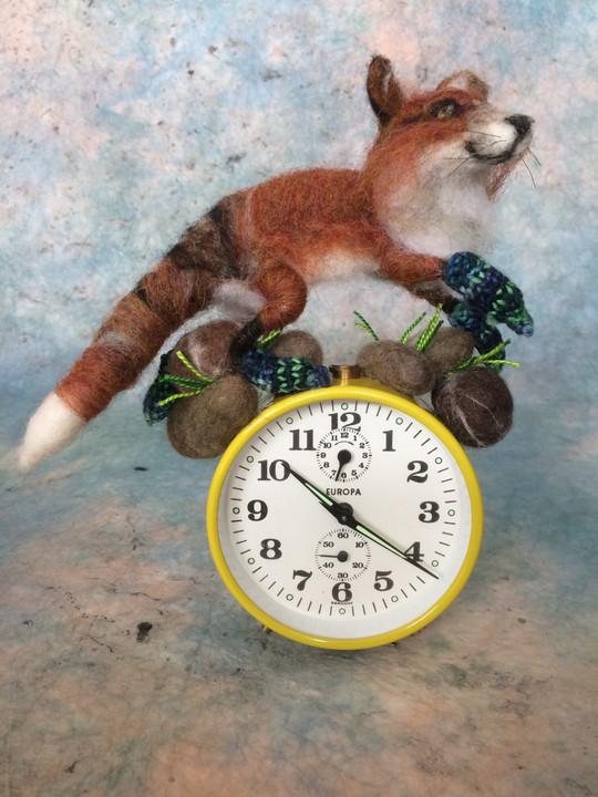 Fox in Socks on Rocks with Clock