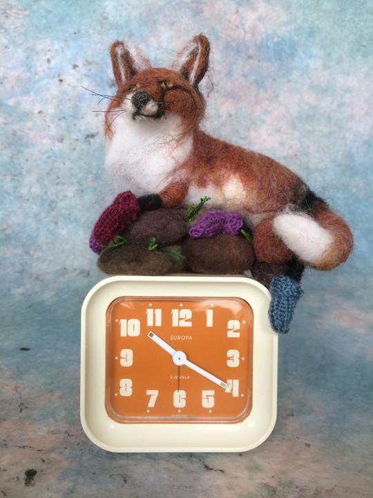 Fox in Socks on Rocks with Closk