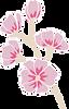 CWF Floral 1.png