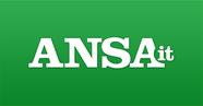 Ansa-1.png