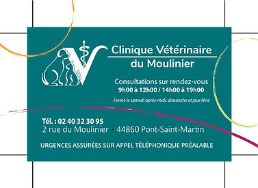 clinique vétérinaire pont saint martin