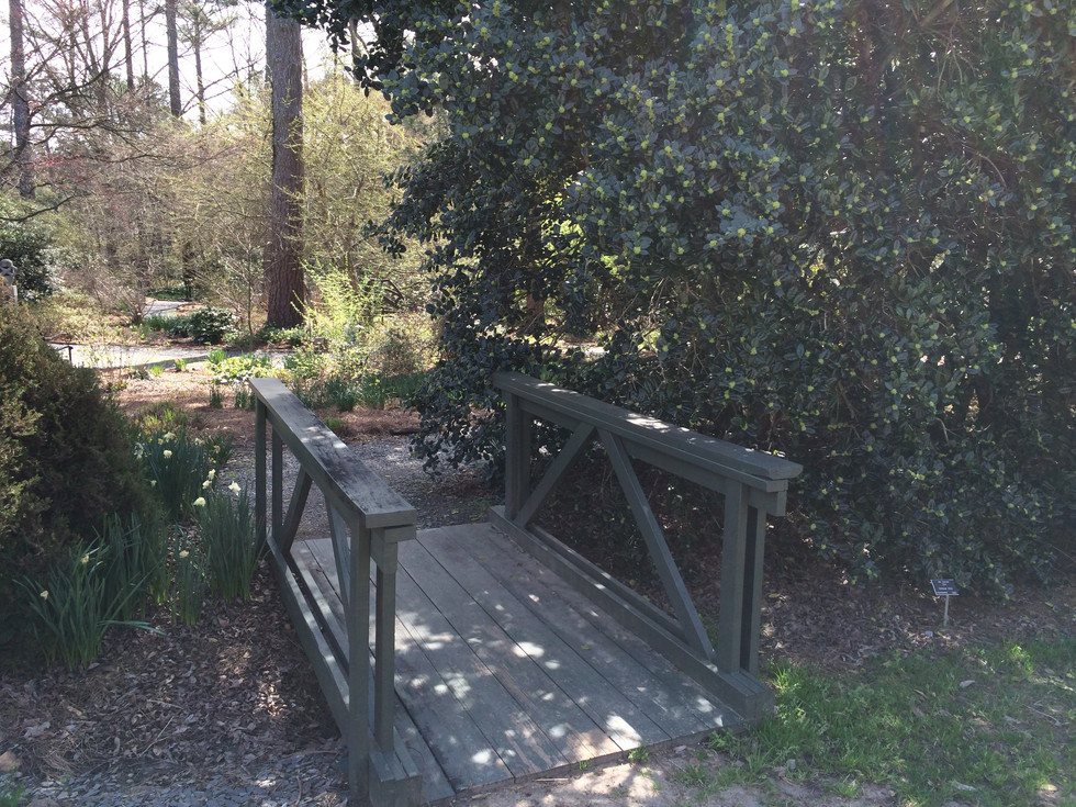 Smith-Gilbert Gardens Field Trip