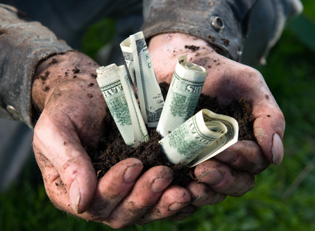 Southeast AG Net: Nearly $13 million in loans awarded to Florida agricultural producers