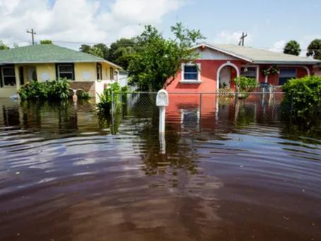 Naples Daily News: Bonita Springs might buy homes in neighborhoods flooded by Hurricane Irma