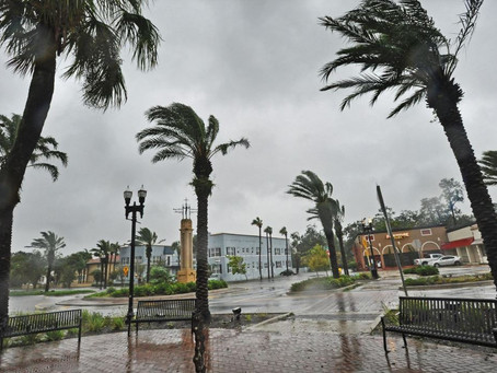 Times-Union: FEMA funds help Jacksonville with Hurricane Irma debris-removal costs