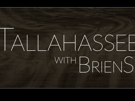 Tallahassee Talks: Erin Gillespie talks Disaster Recovery, Opportunity Zones & More