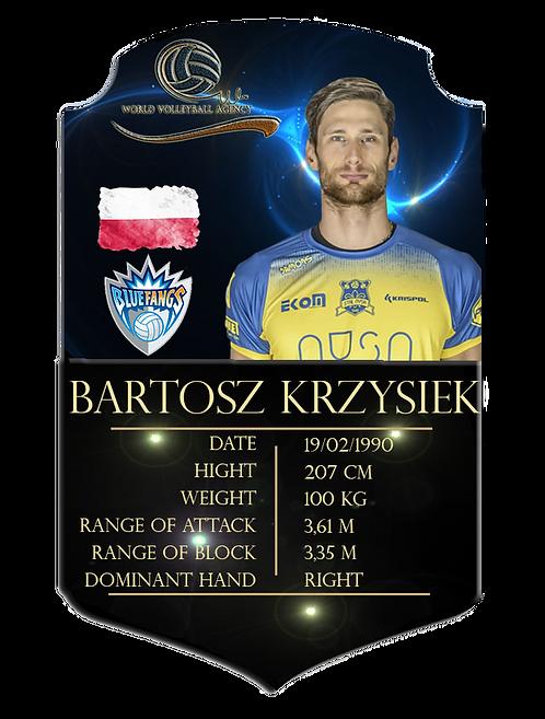 TAERJETA Bartosz Krzysiek PNG.png