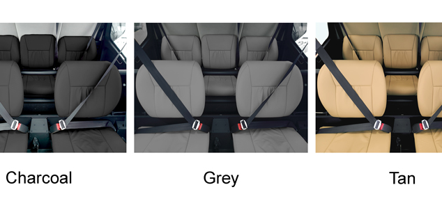 Leather Interior Colors