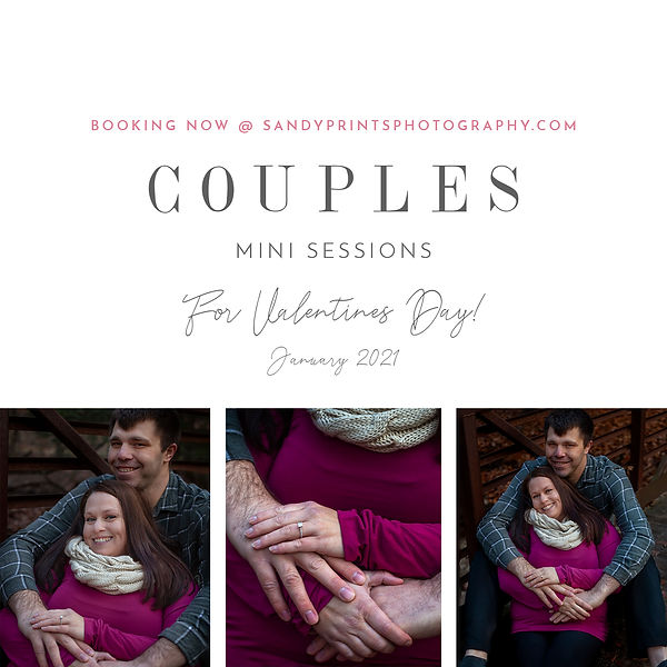 Valentines Couple Session Template.jpg