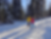 Bauges évasion marche nordique sur neige