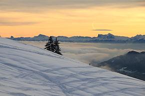 paysage de neige sorties raquette neige famille