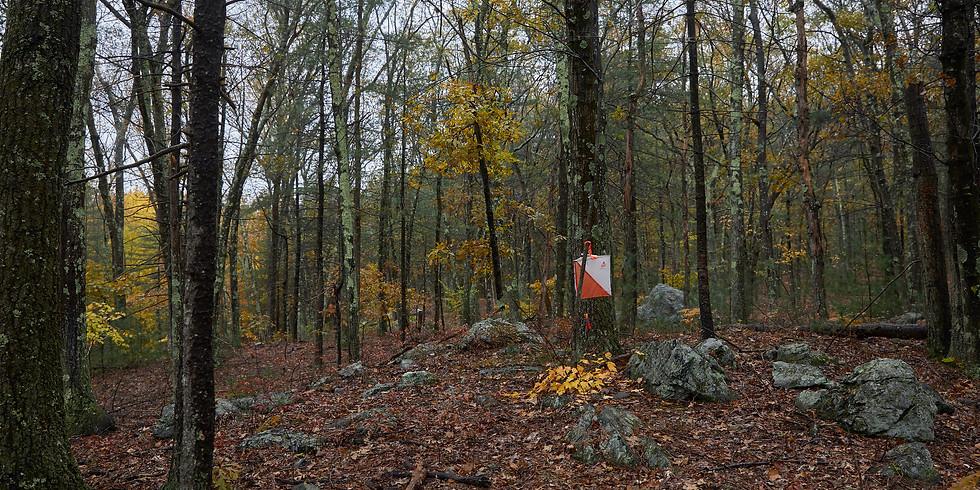 NEOC: Orienteering at Powisset Peak 4/18-26