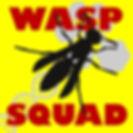 Wasp%20Squad%20Logo_edited.jpg