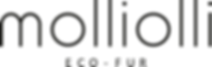 molliolli logo.png