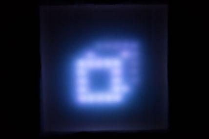 lp square.jpg
