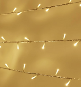 Fairy lights.png