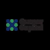 Quasar Capital Logo.png